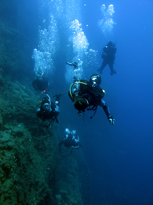 Homepage Diving Courses