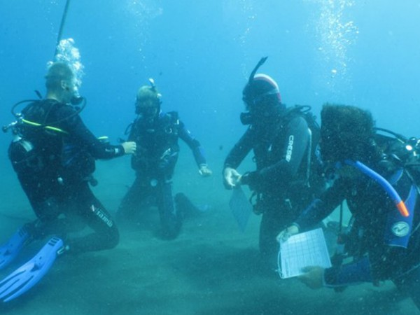 Diving Courses 2