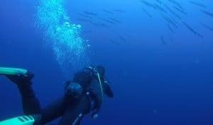 Snorkeling Excursions Santorini